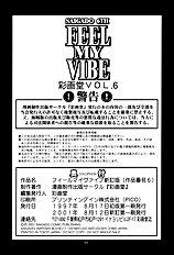 Feel my Vibe Shinteiban